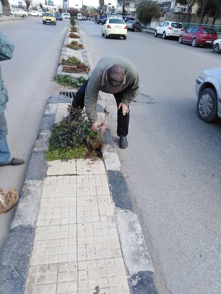 ورشات دائرة الحدائق تتابع أعمالها في المدينة
